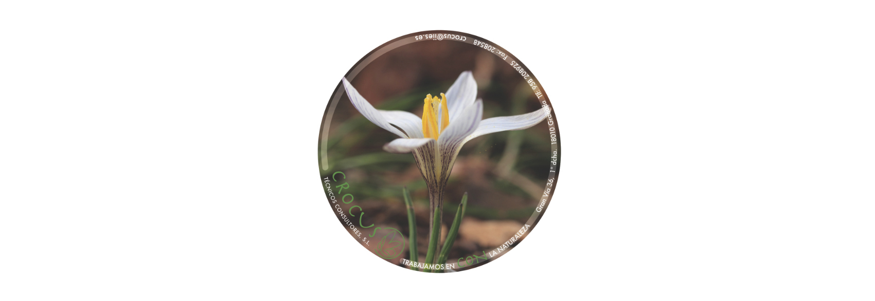 Boreal diseo grfico y editorial espaol crocus sorry this entry is only available in european spanish izmirmasajfo